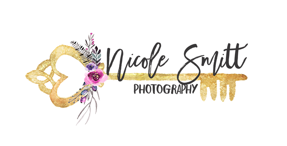 Fort Worth Newborn Photography by Nicole Smitt logo
